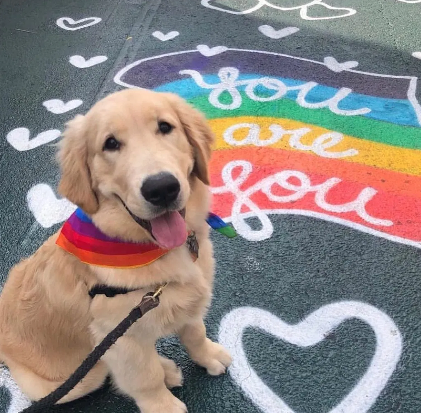 Pride With Your Pup